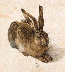 Albrecht_Dürer_-_Young_Hare_-_WGA07362